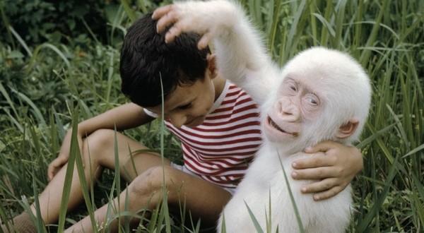 11 animale cu mutatii genetice adorabile